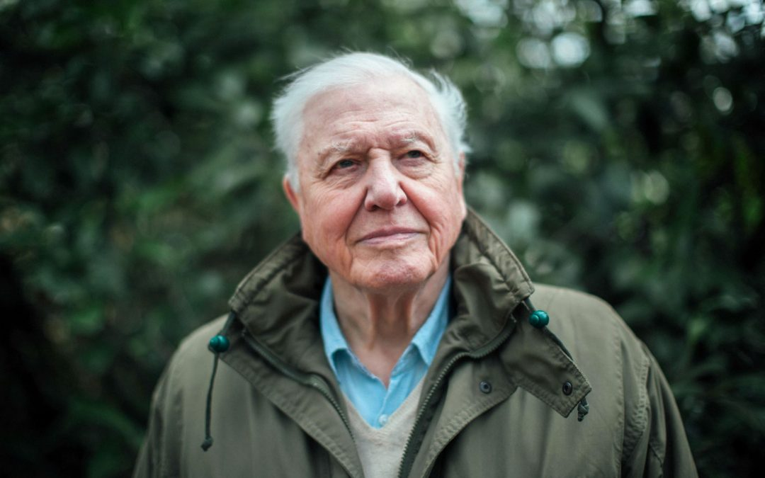 David Attenborough's evidence for nature getting extinct and its solution